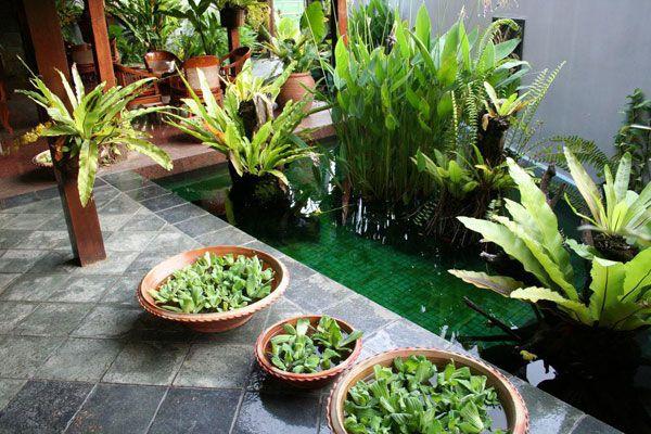 จัดสวนบาหลีในบ้าน 7 ไอเดียจัดสวนสำหรับเมืองร้อน