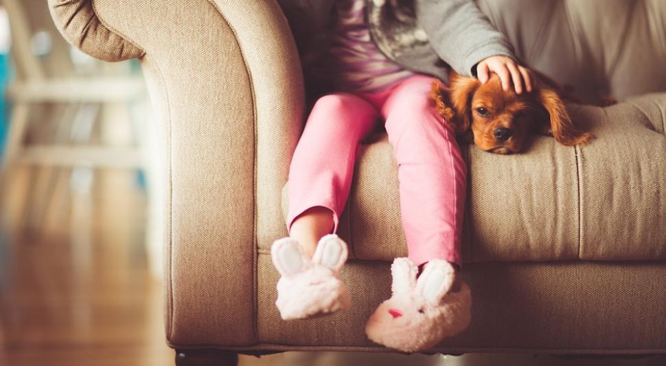 ควรดูแลสุขภาพอย่างไรเมื่อสมาชิกในครอบครัวเลี้ยงน้องหมาไว้ในบ้าน