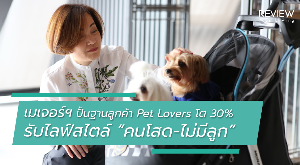Lo Feature Image Mjd Pet Lover