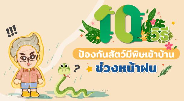 10 วิธีป้องกันสัตว์มีพิษเข้าบ้าน ช่วงหน้าฝนfeature