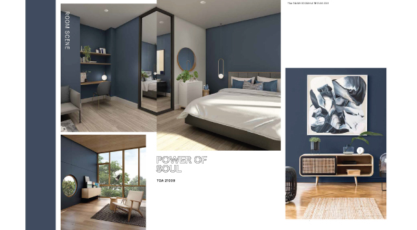 Toa Trend Color 2021 4
